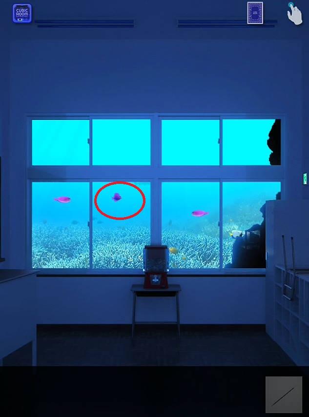 水槽 魚の色cubic room2攻略